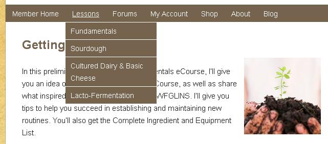 gnowfglins dropdown menu setup
