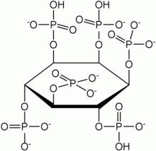 phytate molecule