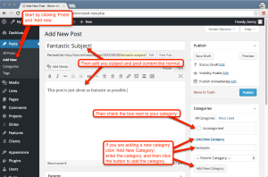 Create a new wordpress post