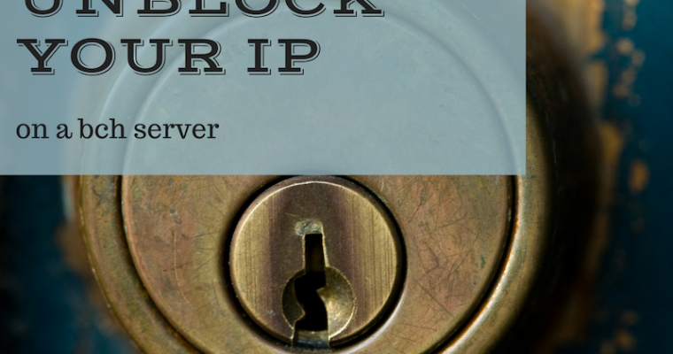 How to Unblock Your IP on a BCH Server